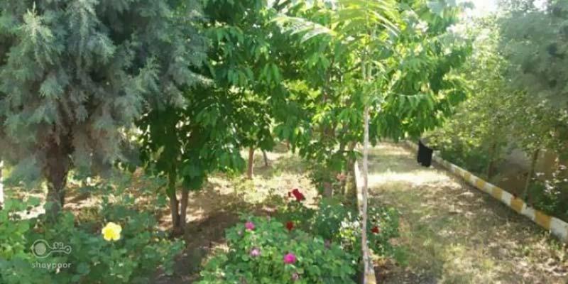 فروش باغچه چهارباغ 450 متری