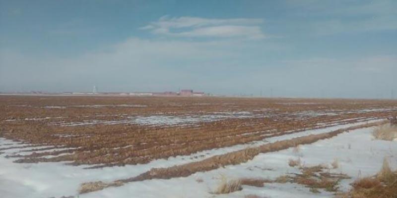 فروش زمین کشاورزی بوئین زهرا قزوین